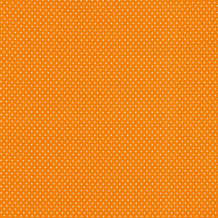 079804_verena_100424_orange