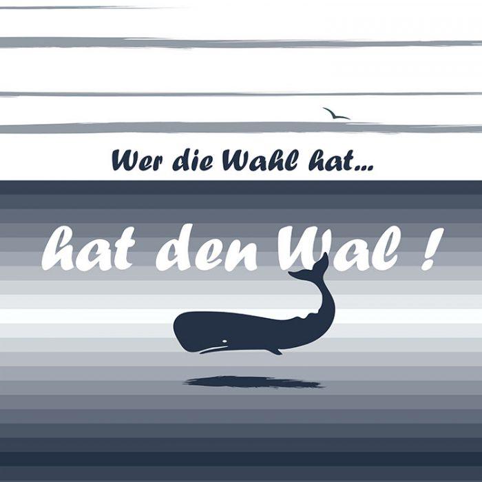 Walisch_750x750_Rückseite