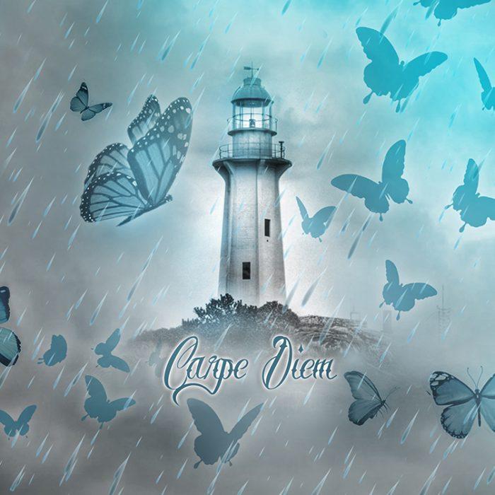 Fog Shipp Butterflys_1500x1800_750x750_II