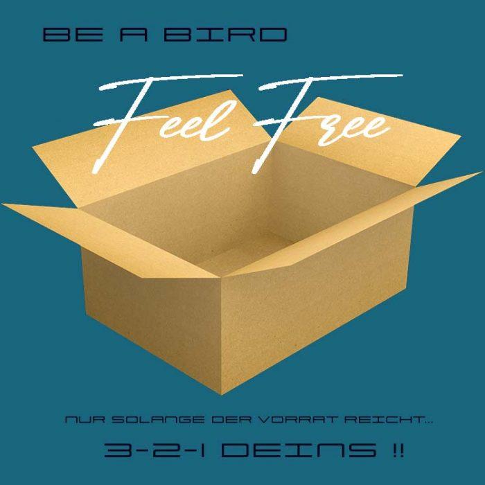 BeaBird_18032020_petrol