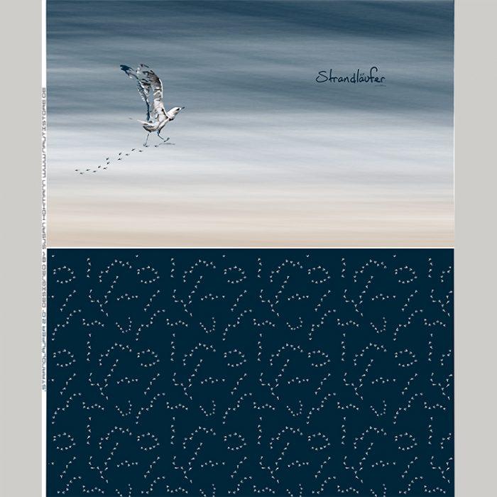 Strandläufer_2.0_1500x1800_750x750