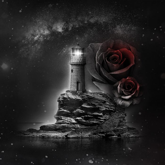 Dark_Roses_1500x2000_750x750_II