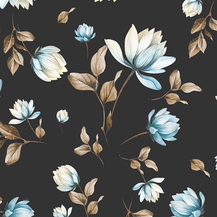Lotus_Kombi_1500x1000_750x750_I