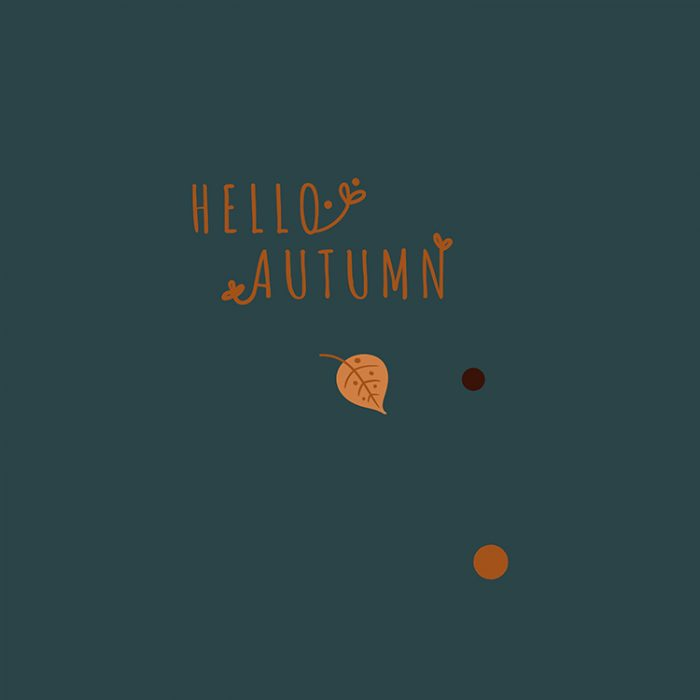 Hello_Autumn_1500x2000_750x750_II