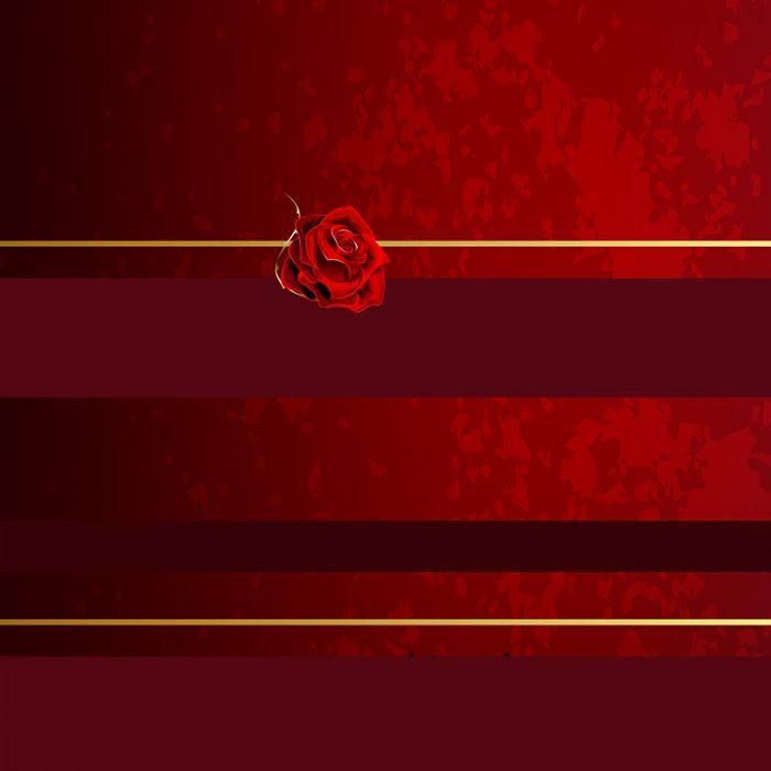 Red_Roses_1500x2000_750x750_V